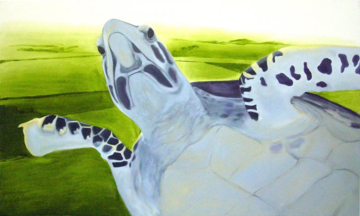 Flying turtle, oil on canvas, 120cmx200cm, 2008