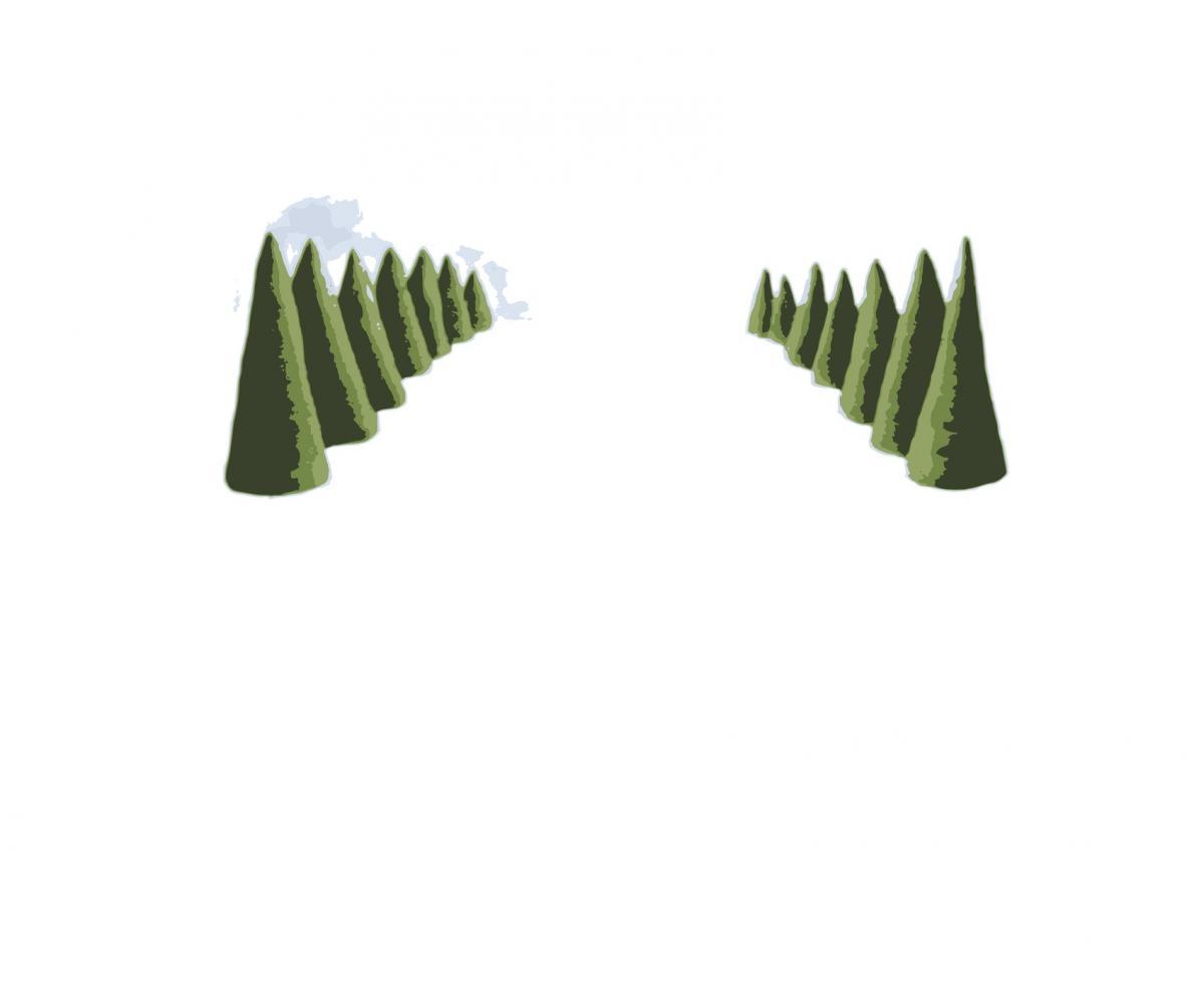 Landscape, vector image, Lambda print, Diasec finish